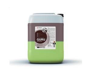 Средство для бесконтактн мойки Complex GURU 20л