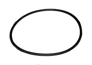 Кольцо уплотнительное (каретка) 04.31.116